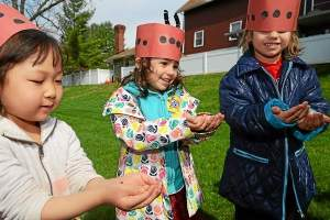 Chesterbrook Academy preschoolers hold ladybugs on their hands. Students at Chesterbrook Academy in Tredyffrin released thousands of the bugs on Wednesday in celebration of Earth Day. Ladybugs feed on insects that are harmful to gardens, trees and shrubs. (Pete Bannan)