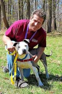 Pictured is Arnie Milowsky, along with an adoptable dog, during the Chester County SPCA's 28th annual Walk for Paws event. This year featured a new 5K and yoga session. All money raised from the day-long festivities goes directly back to the SPCA. (Chester County SPCA)