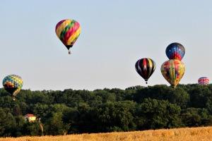 Balloon29