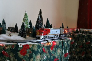 Robin and Susan Tafel set up a holiday train display every year at the Tenemos Retreat Center in West Chester and let the public come to see it or actually become an engineer to run it. (Candice Monhollan)